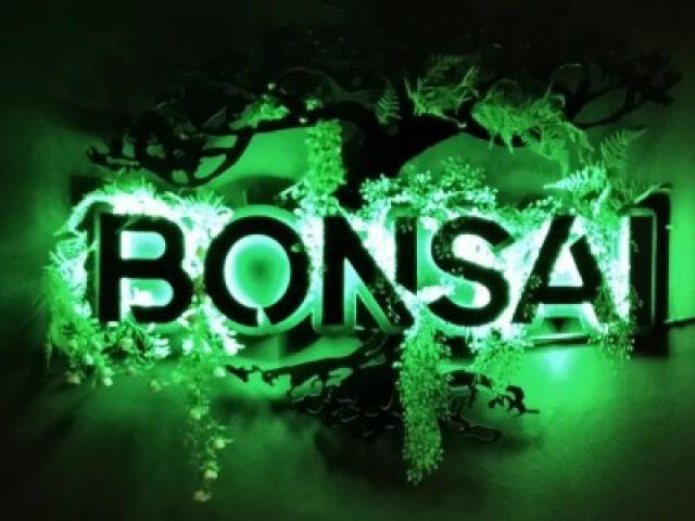 Bonsai Shisha lounge
