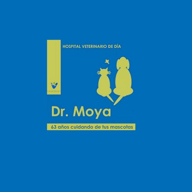 VeterSalud Dr Moya